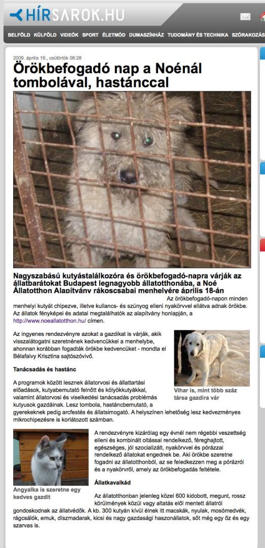 helyszíni találkozón állat)